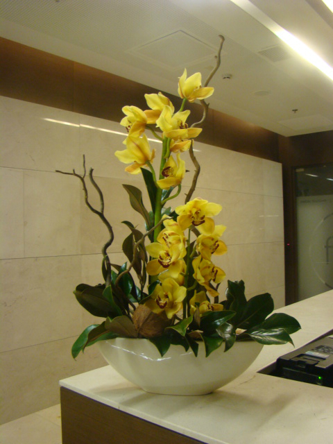 Four Seasons kwiaty do biura