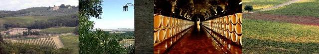 cuda toskanii wina włoskie