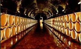 cuda tosaknii wina włoskie